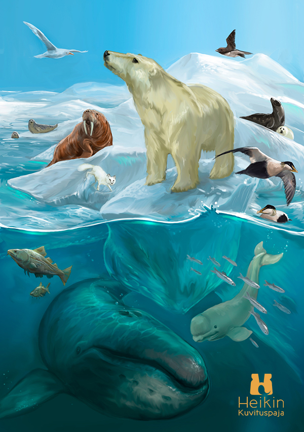 016_save_the_arctic_nature_whale_polar_character_illustration_fiction_HeikinKuvituspaja.jpg
